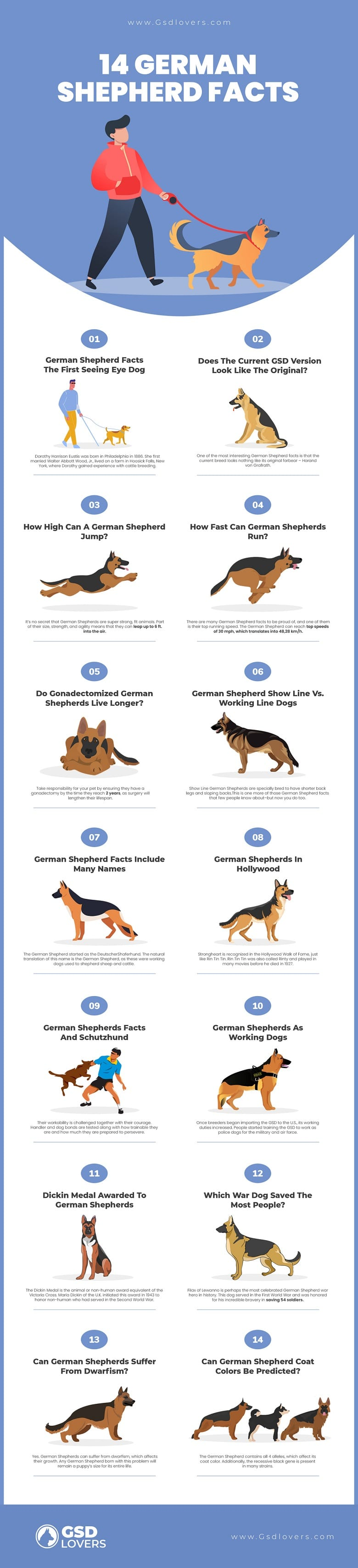 GSD Facts