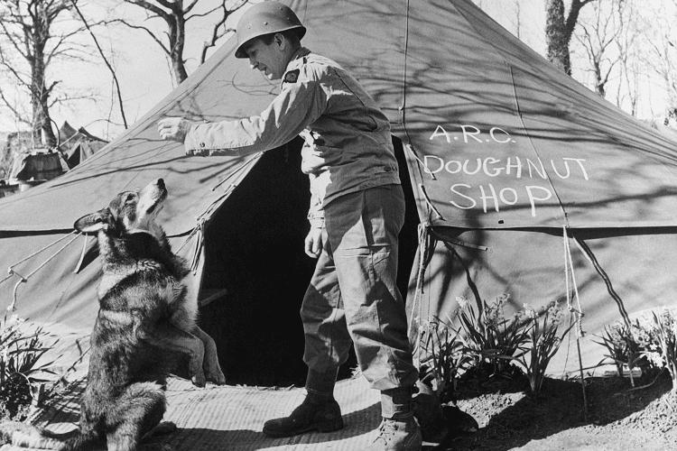 Chips – Dog of War – 1939