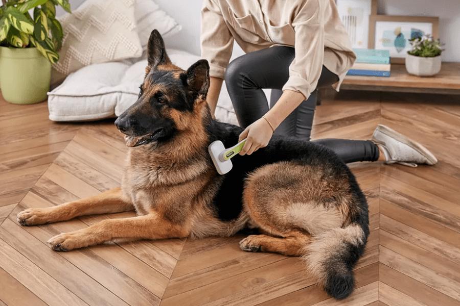 Best Brush For German Shepherds