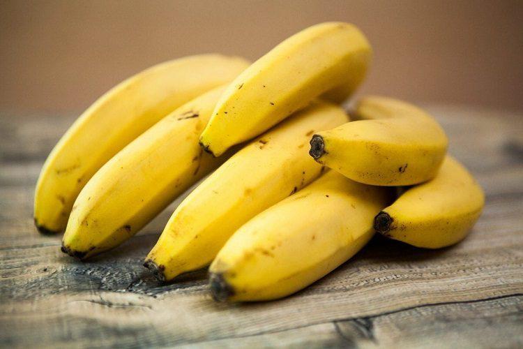 are bananas good for german shepherd